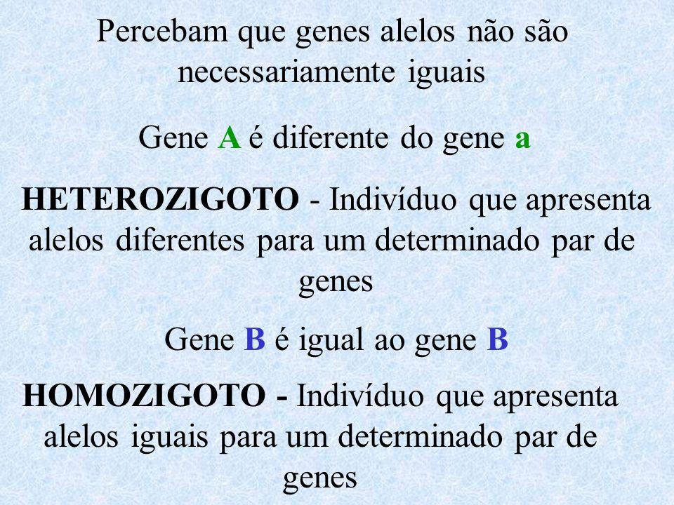 Percebam que genes alelos não são necessariamente iguais