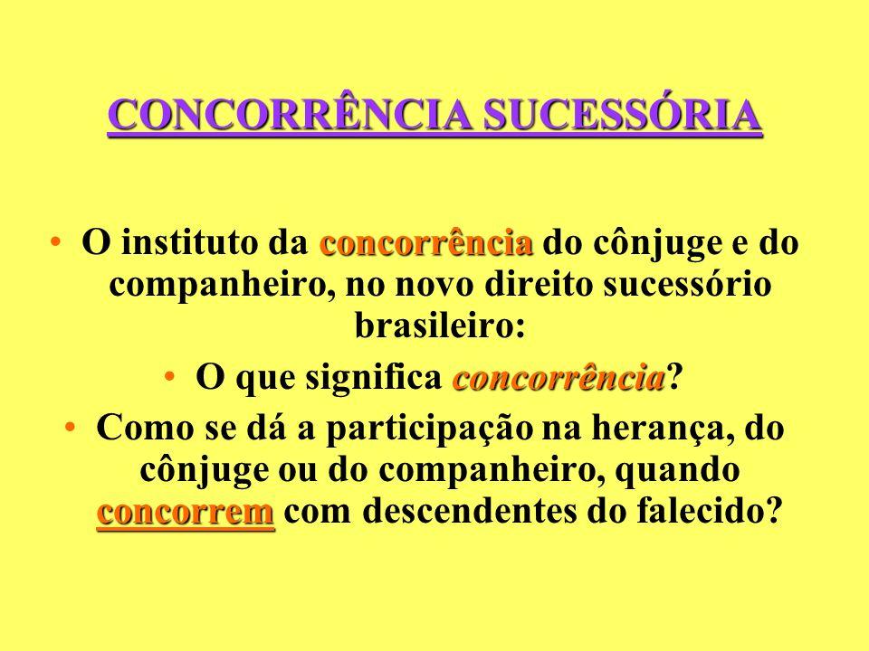 CONCORRÊNCIA SUCESSÓRIA