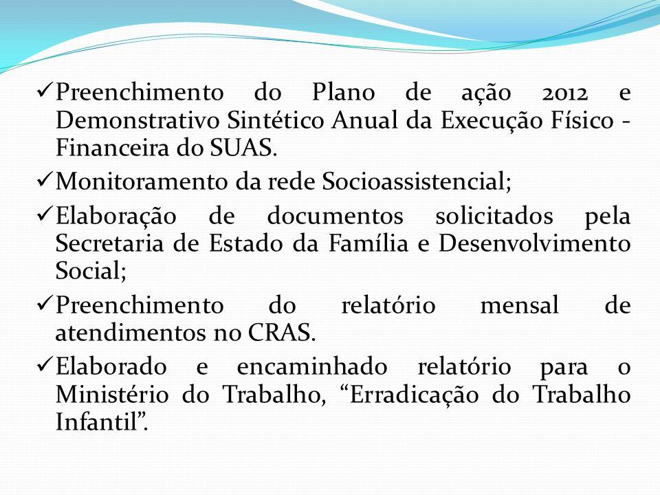 Preenchimento do Plano de ação 2012 e Demonstrativo Sintético Anual da Execução Físico - Financeira do SUAS.