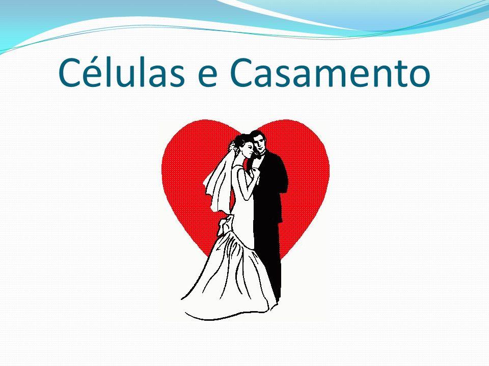 Células e Casamento