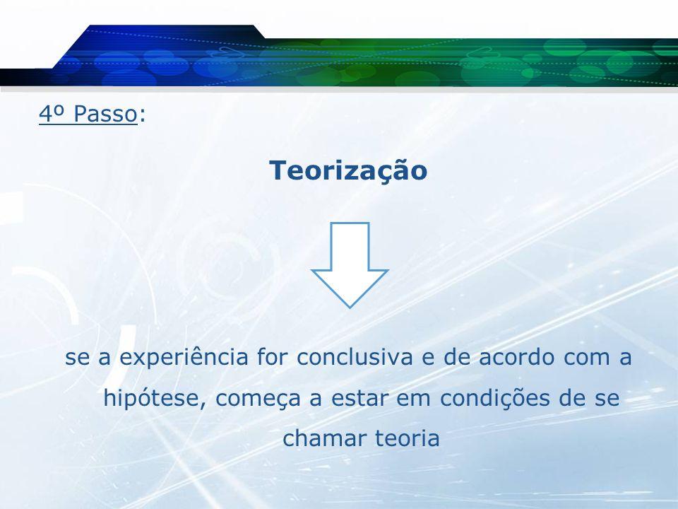 4º Passo: Teorização.