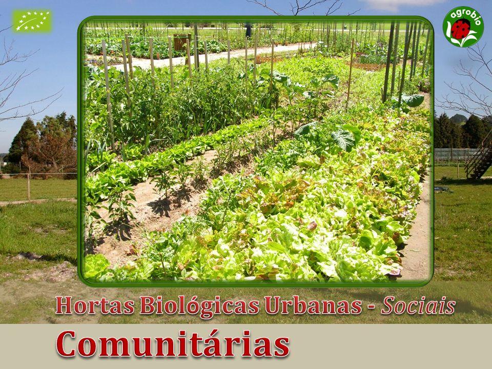 Hortas Biológicas Urbanas - Sociais