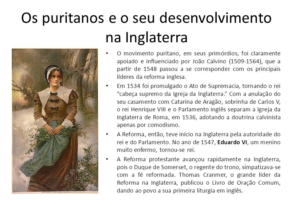 Os puritanos e o seu desenvolvimento na Inglaterra