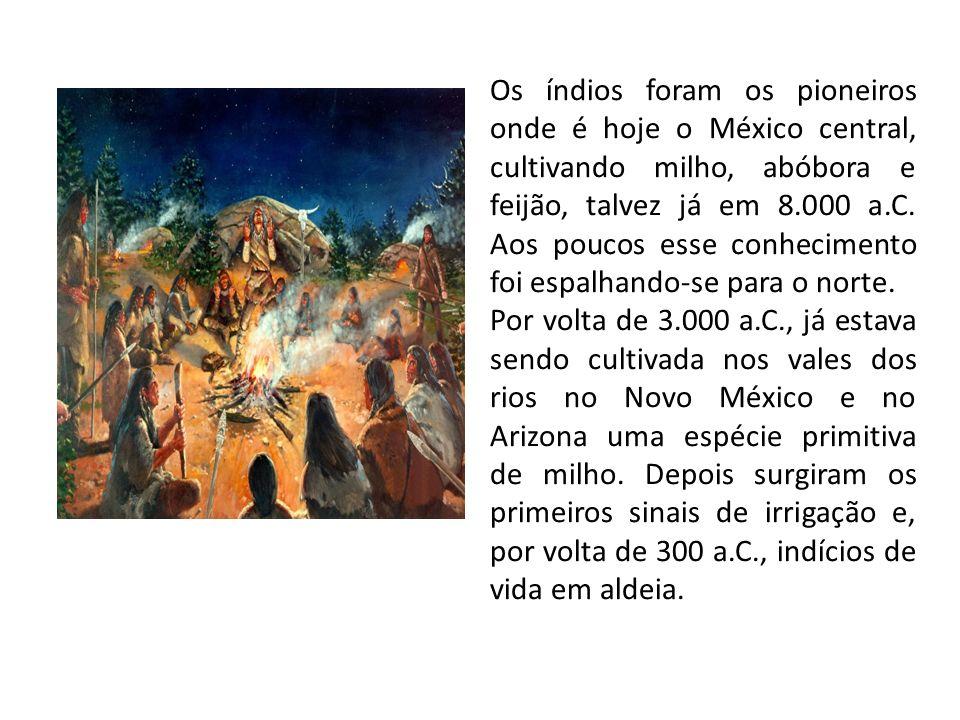 Os índios foram os pioneiros onde é hoje o México central, cultivando milho, abóbora e feijão, talvez já em 8.000 a.C. Aos poucos esse conhecimento foi espalhando-se para o norte.