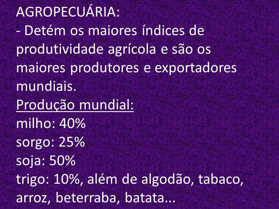 AGROPECUÁRIA: - Detém os maiores índices de produtividade agrícola e são os maiores produtores e exportadores mundiais.