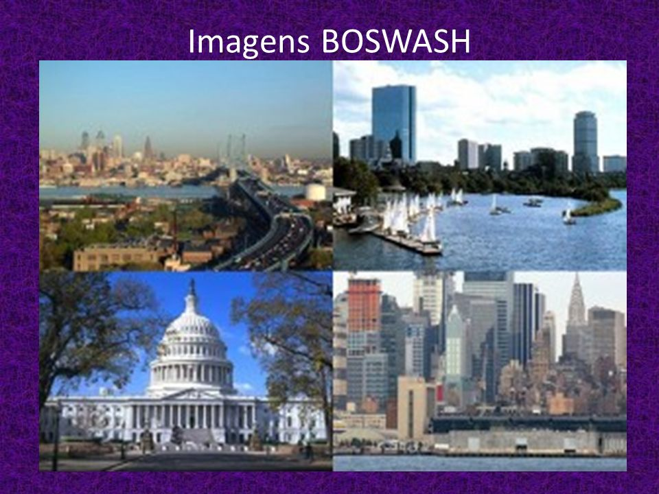 Imagens BOSWASH