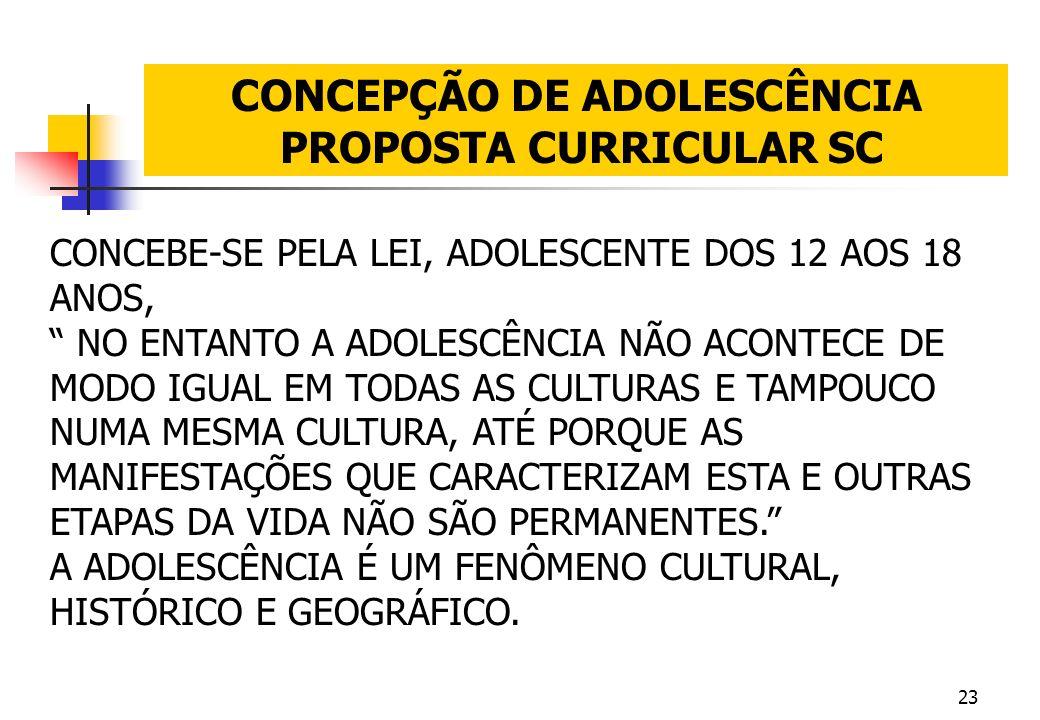 CONCEPÇÃO DE ADOLESCÊNCIA PROPOSTA CURRICULAR SC