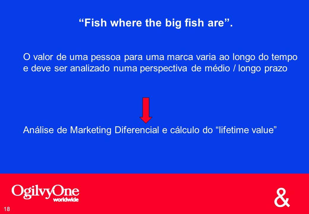 Fish where the big fish are .