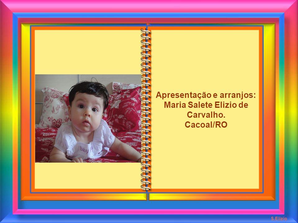 Apresentação e arranjos: Maria Salete Elizio de Carvalho.