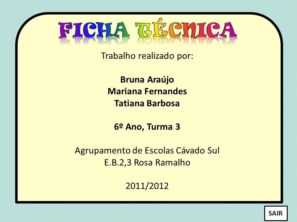 Ficha técnica Trabalho realizado por: Bruna Araújo Mariana Fernandes