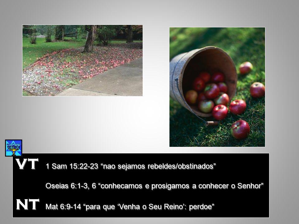 VT 1 Sam 15:22-23 nao sejamos rebeldes/obstinados