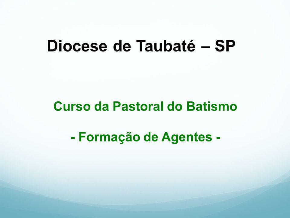 Curso da Pastoral do Batismo