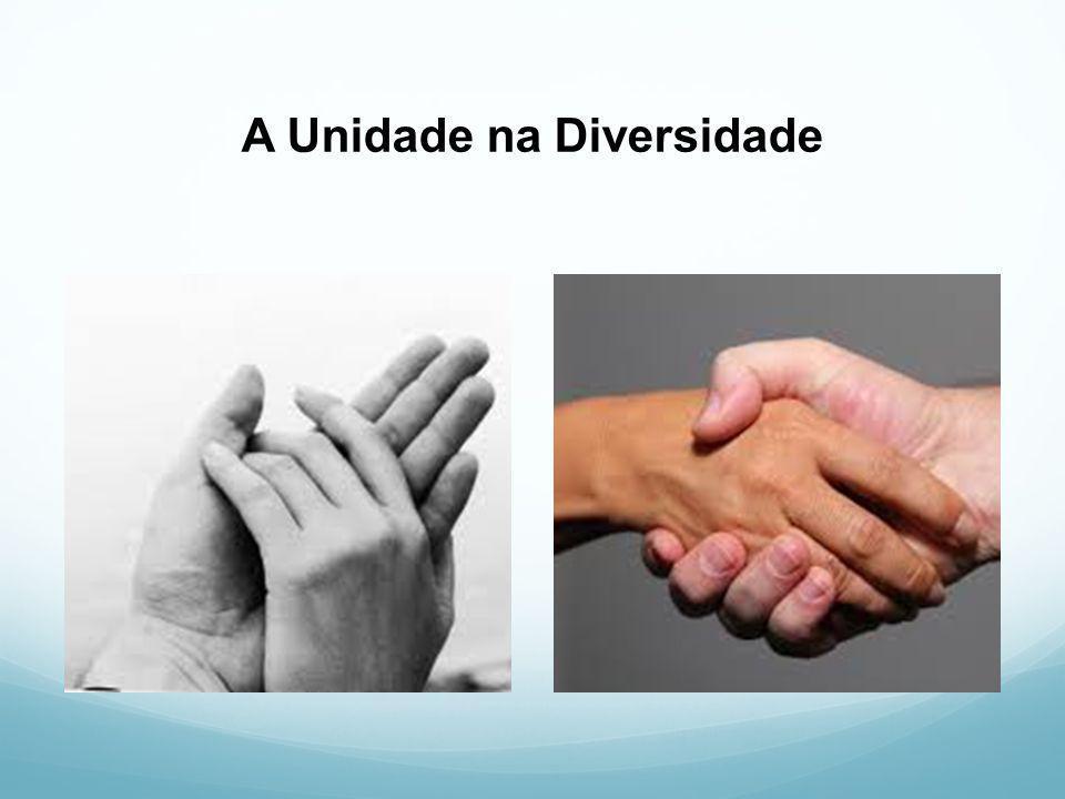 A Unidade na Diversidade