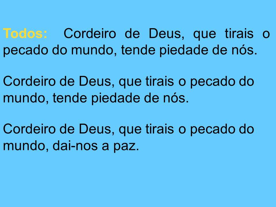 Todos: Cordeiro de Deus, que tirais o pecado do mundo, tende piedade de nós.