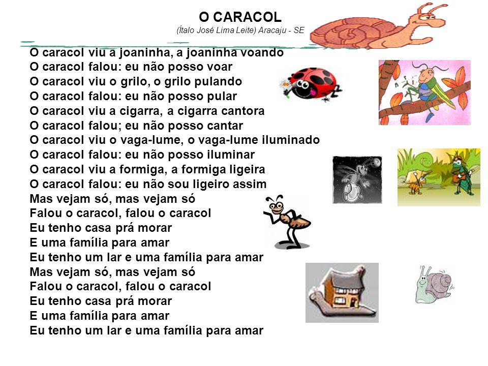 O CARACOL (Ítalo José Lima Leite) Aracaju - SE