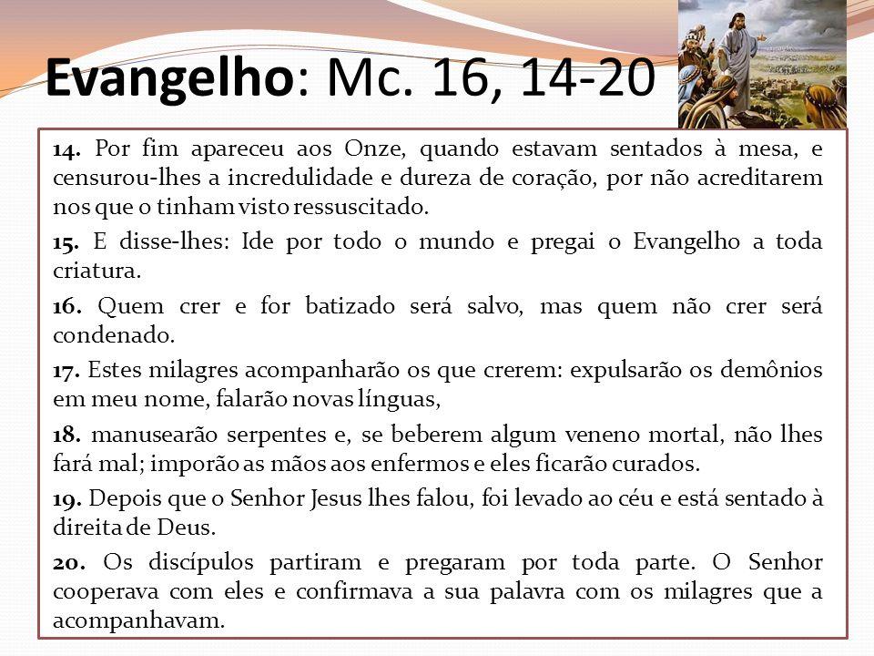 Evangelho: Mc. 16, 14-20