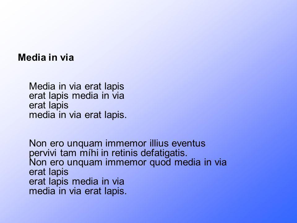 Media in via Media in via erat lapis erat lapis media in via erat lapis media in via erat lapis.