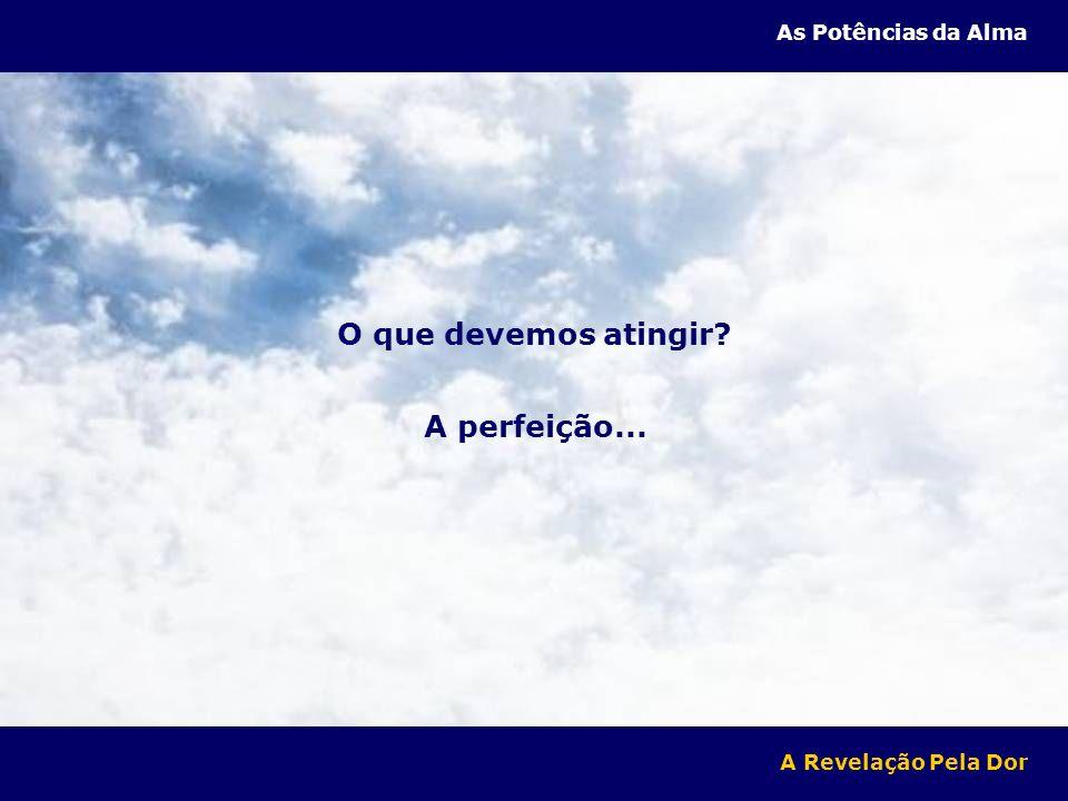 O que devemos atingir A perfeição...