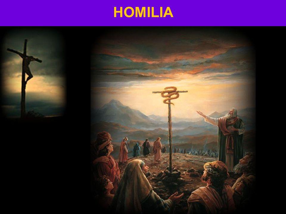 HOMILIA 30