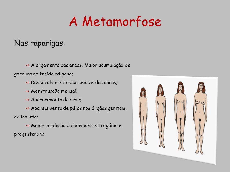 A Metamorfose Nas raparigas: