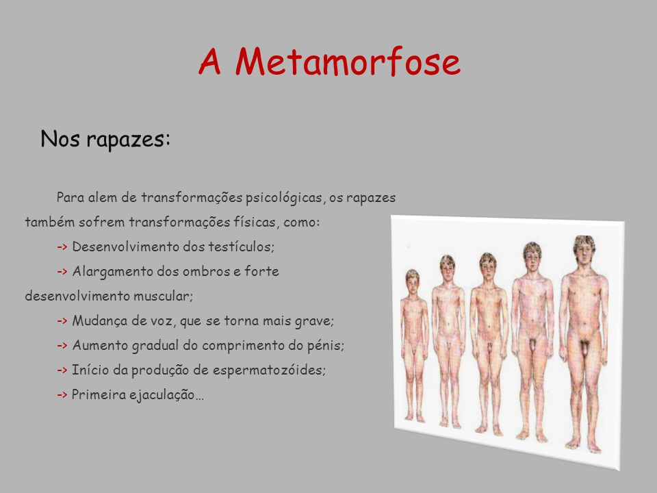 A Metamorfose Nos rapazes: