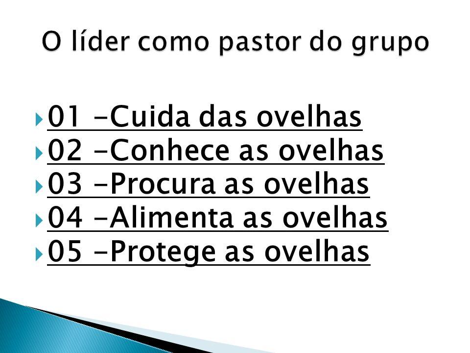 O líder como pastor do grupo