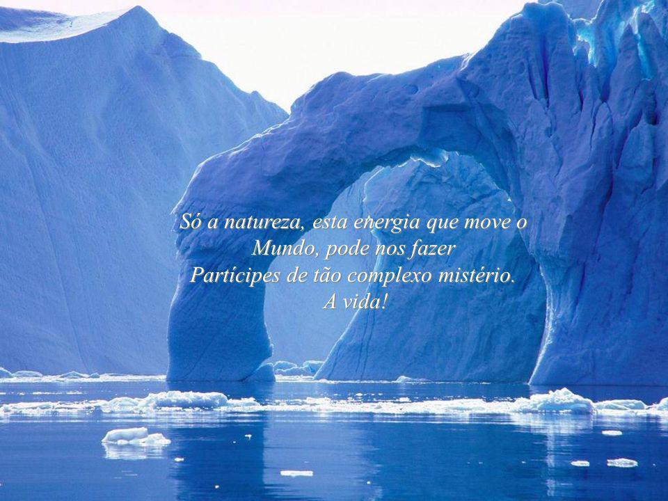 Só a natureza, esta energia que move o Mundo, pode nos fazer