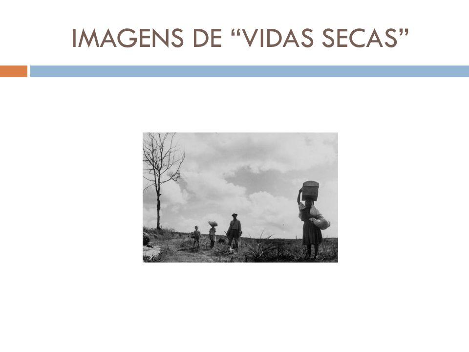 IMAGENS DE VIDAS SECAS