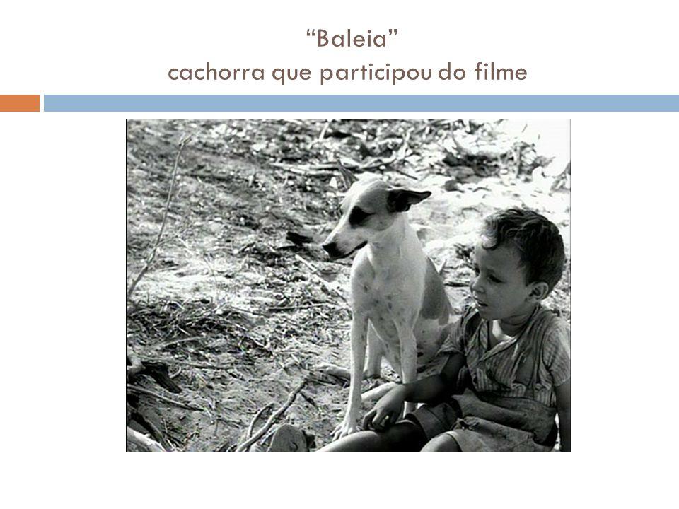 Baleia cachorra que participou do filme