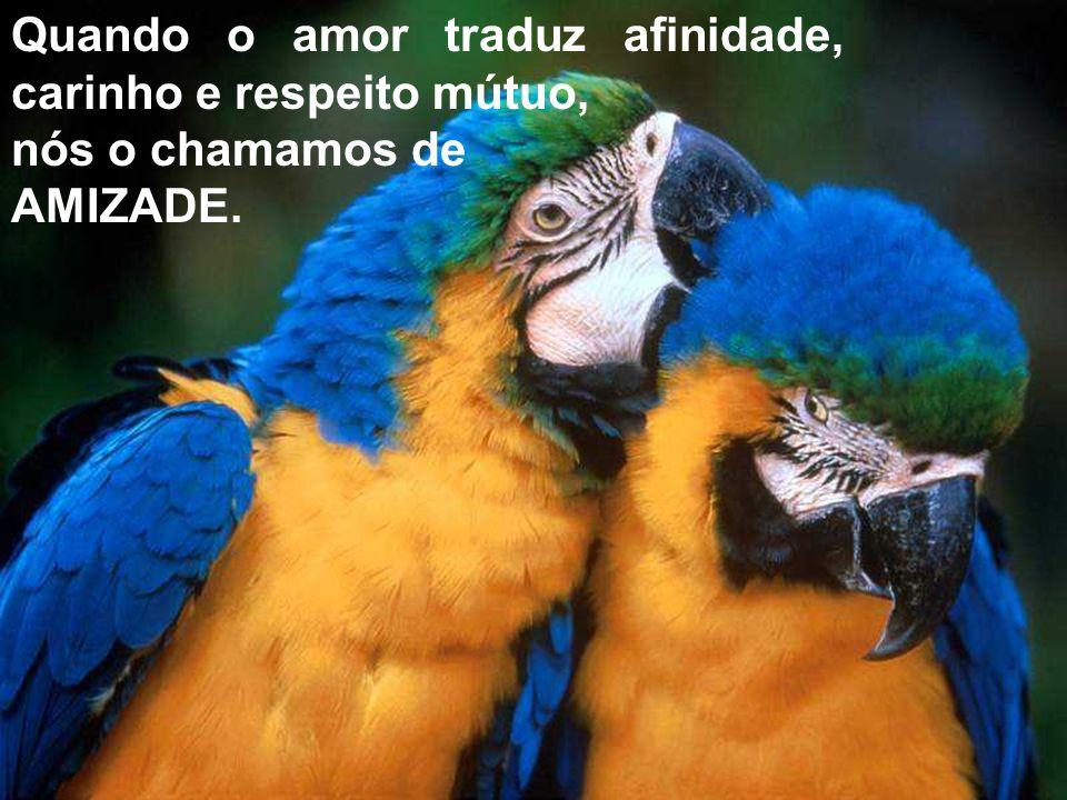 Quando o amor traduz afinidade, carinho e respeito mútuo,