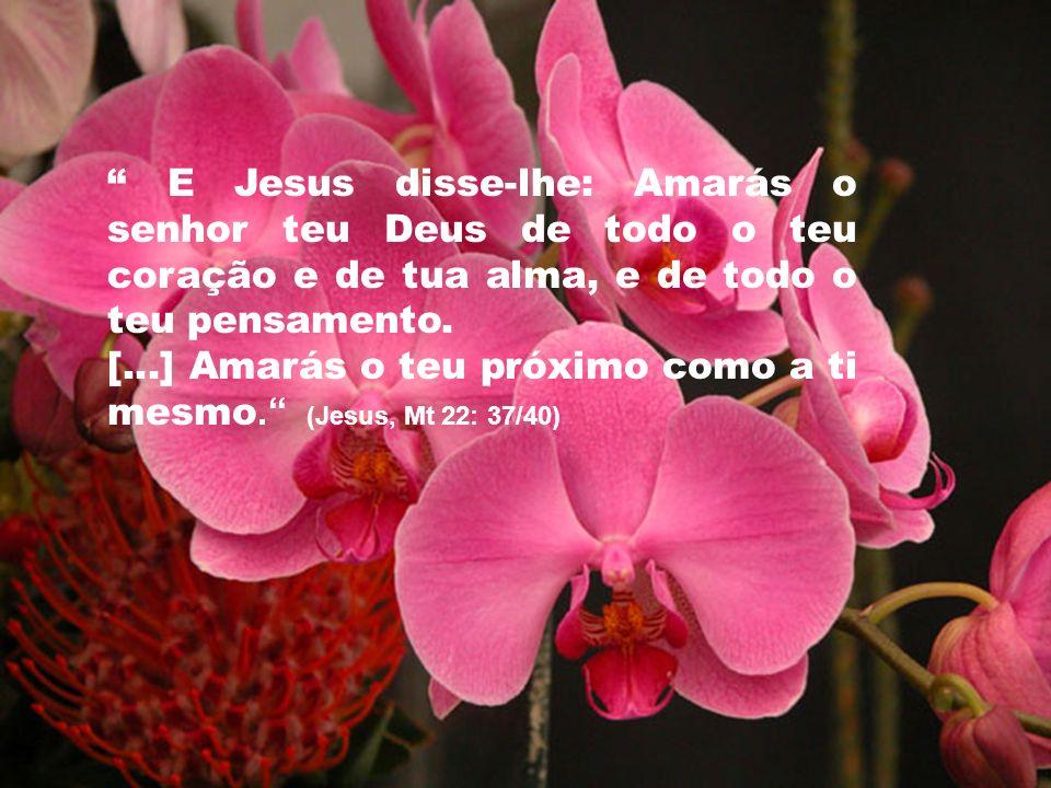 E Jesus disse-lhe: Amarás o senhor teu Deus de todo o teu coração e de tua alma, e de todo o teu pensamento.