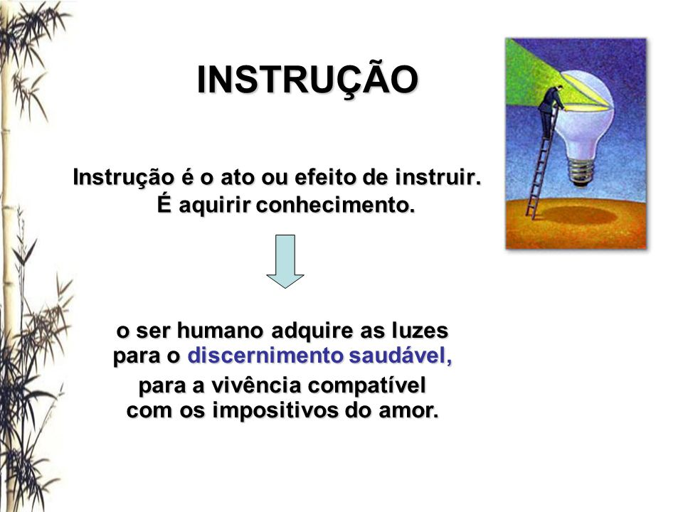 INSTRUÇÃO Instrução é o ato ou efeito de instruir.