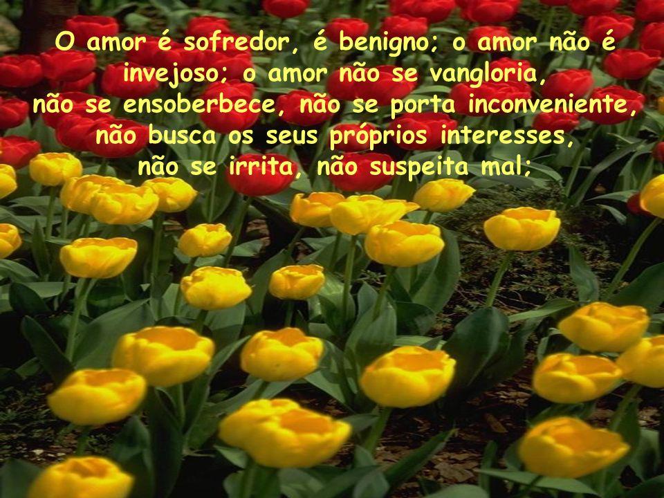 O amor é sofredor, é benigno; o amor não é