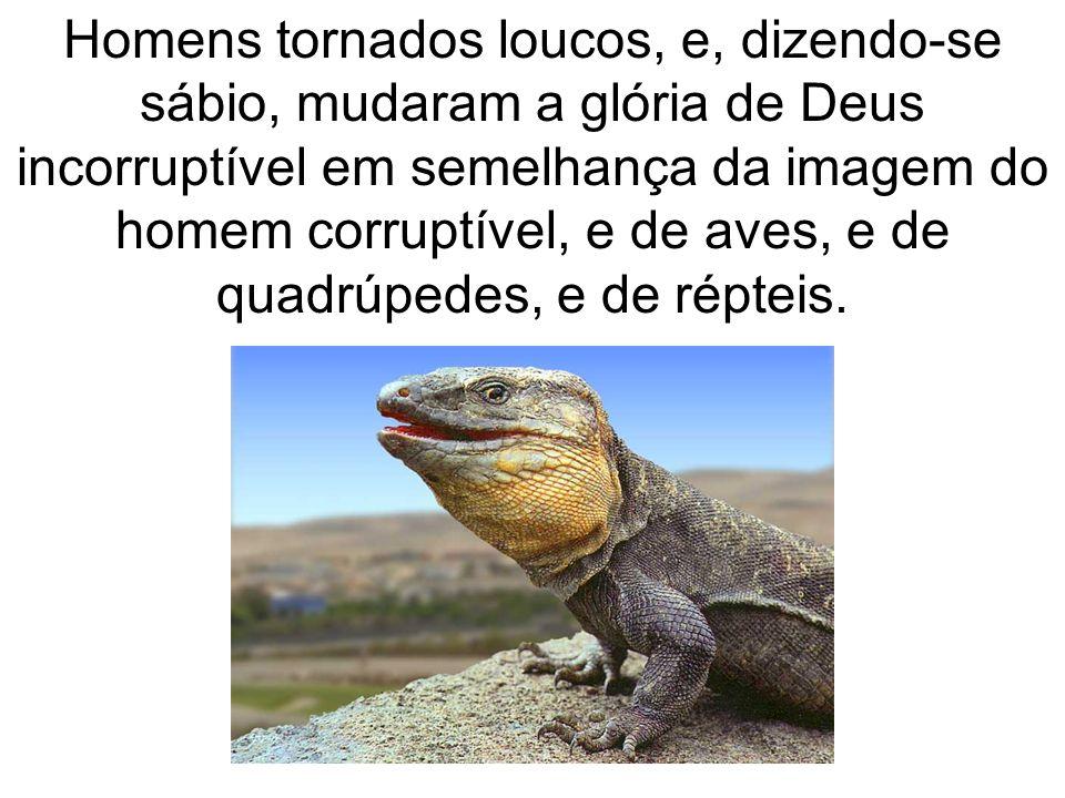Homens tornados loucos, e, dizendo-se sábio, mudaram a glória de Deus incorruptível em semelhança da imagem do homem corruptível, e de aves, e de quadrúpedes, e de répteis.