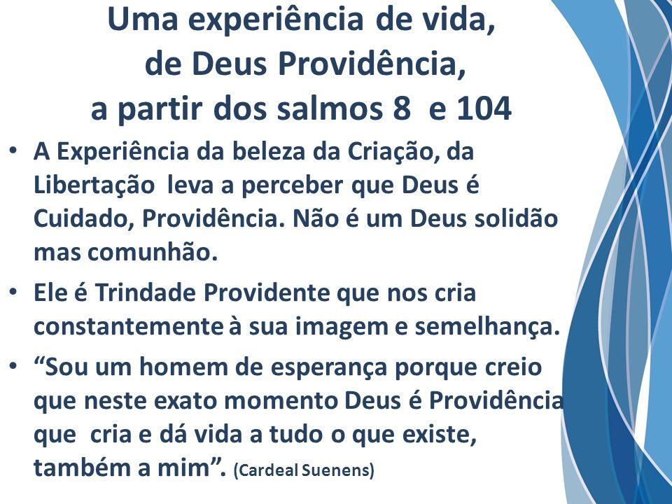 Uma experiência de vida, de Deus Providência, a partir dos salmos 8 e 104