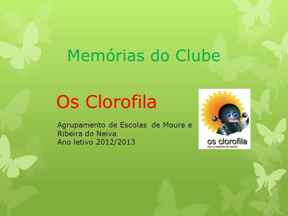 Os Clorofila Memórias do Clube
