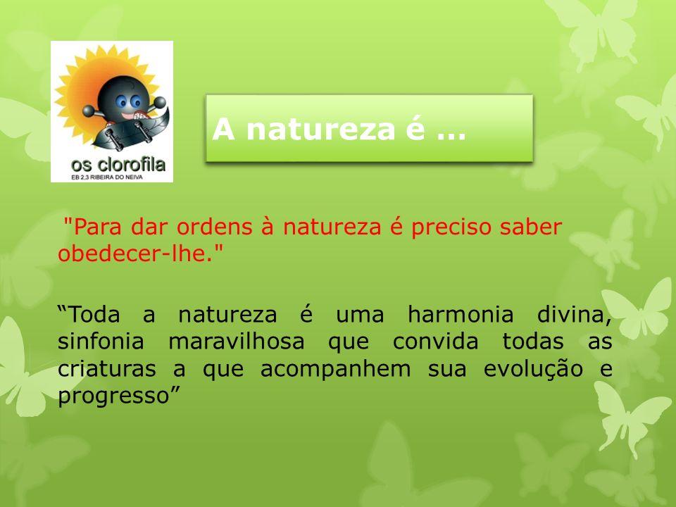 A natureza é … Para dar ordens à natureza é preciso saber obedecer-lhe.