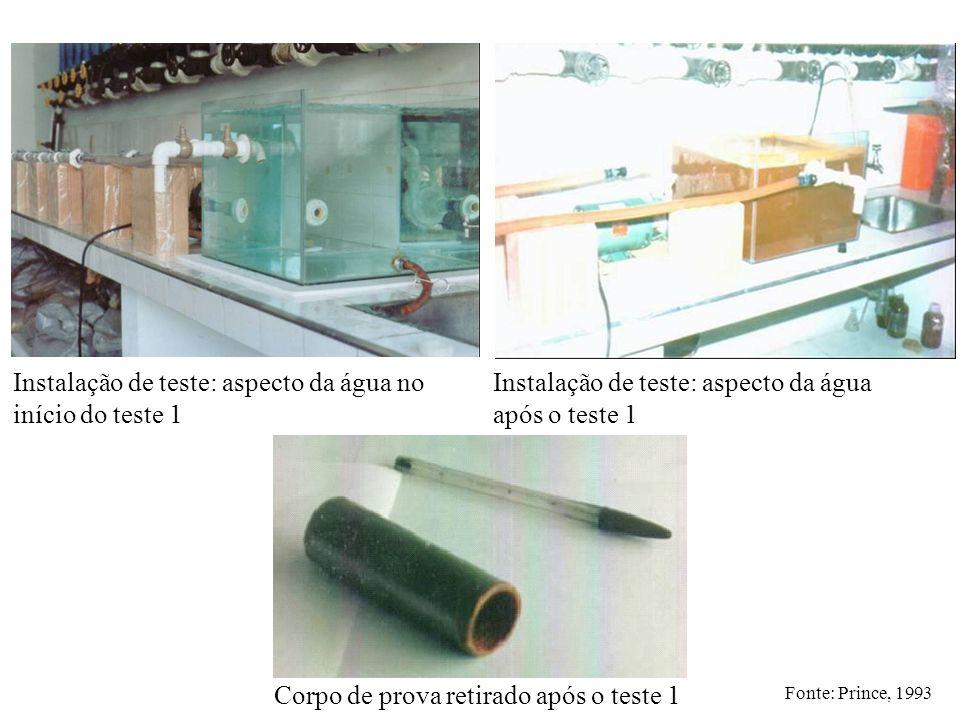 Instalação de teste: aspecto da água no início do teste 1