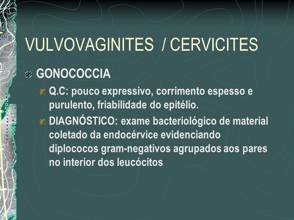 VULVOVAGINITES / CERVICITES