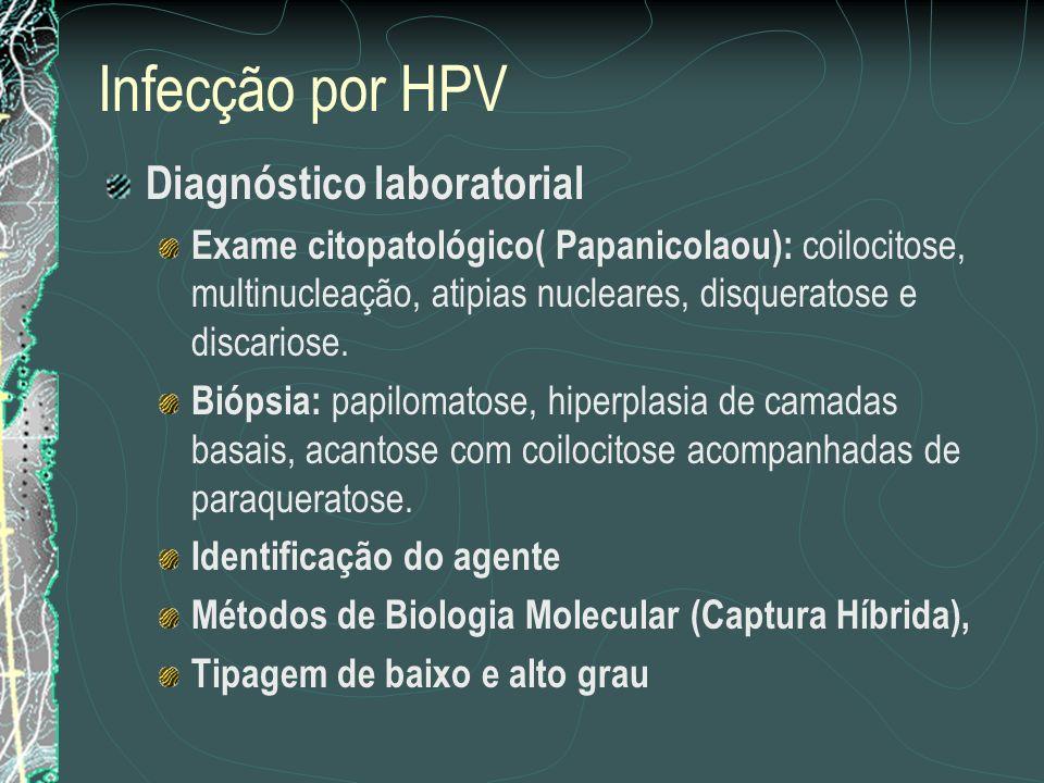 Infecção por HPV Diagnóstico laboratorial