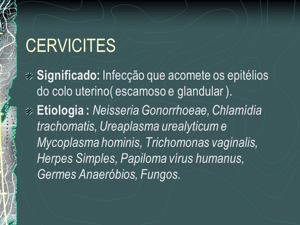 CERVICITES Significado: Infecção que acomete os epitélios do colo uterino( escamoso e glandular ).