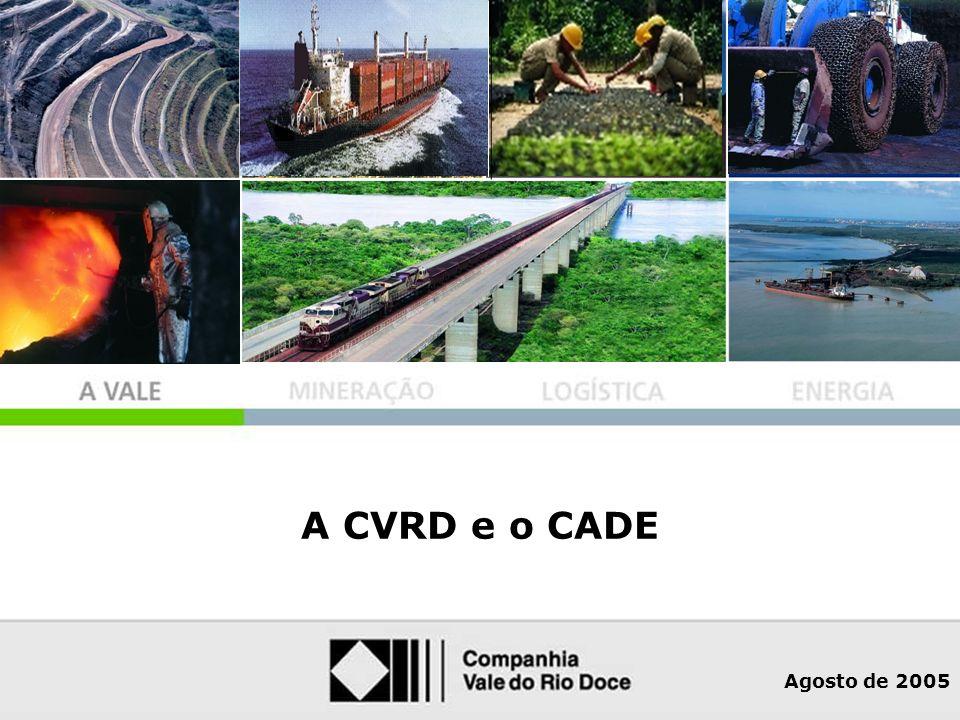 O Grupo CVRD no Mundo A CVRD e o CADE