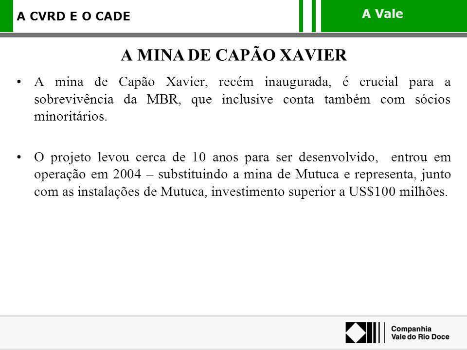 A MINA DE CAPÃO XAVIER