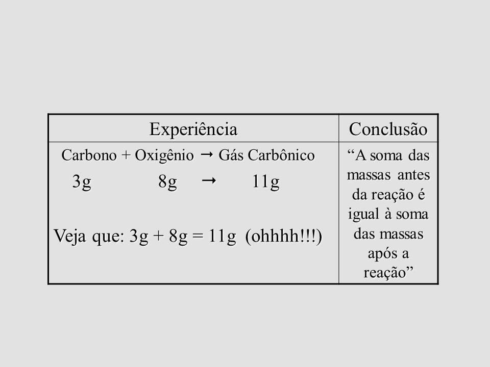 Lei de Lavoisier Experiência Conclusão 3g 8g  11g