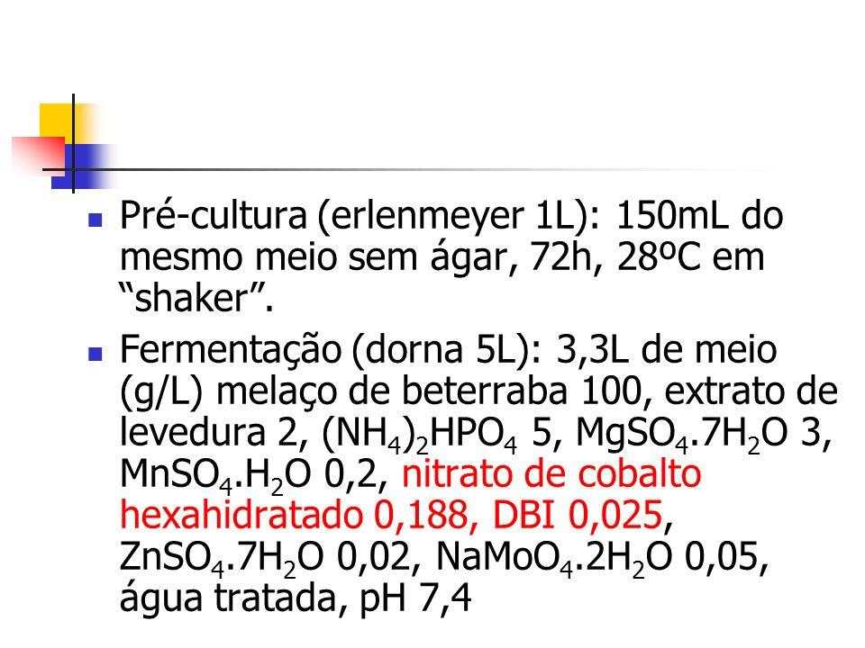 Pré-cultura (erlenmeyer 1L): 150mL do mesmo meio sem ágar, 72h, 28ºC em shaker .