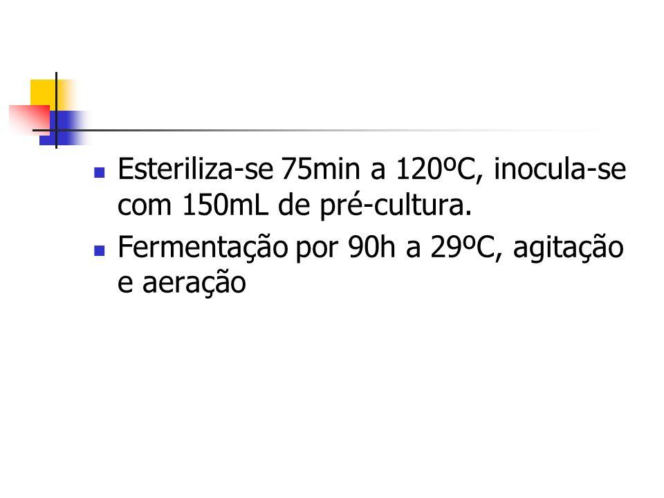 Esteriliza-se 75min a 120ºC, inocula-se com 150mL de pré-cultura.
