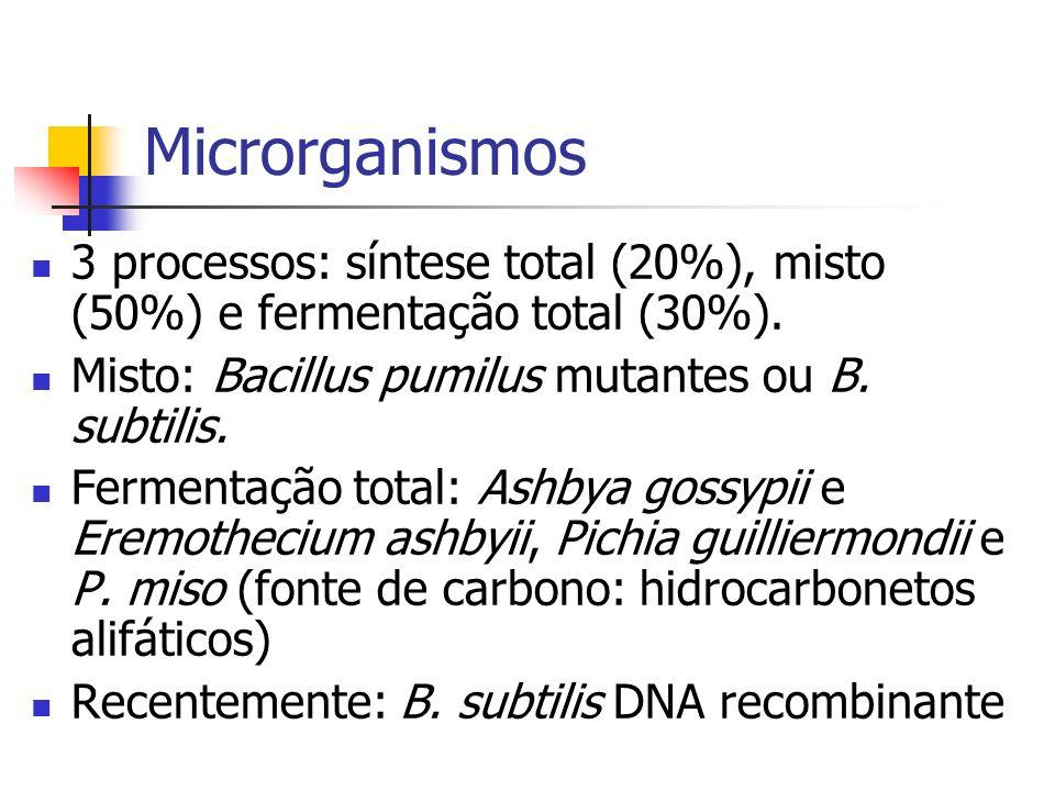 Microrganismos 3 processos: síntese total (20%), misto (50%) e fermentação total (30%). Misto: Bacillus pumilus mutantes ou B. subtilis.