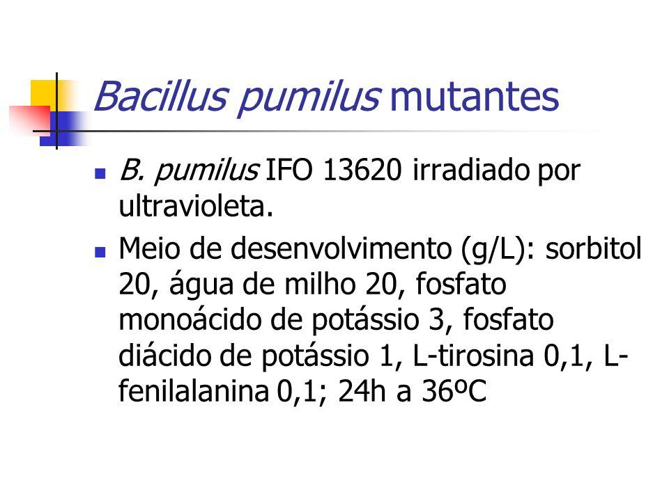 Bacillus pumilus mutantes