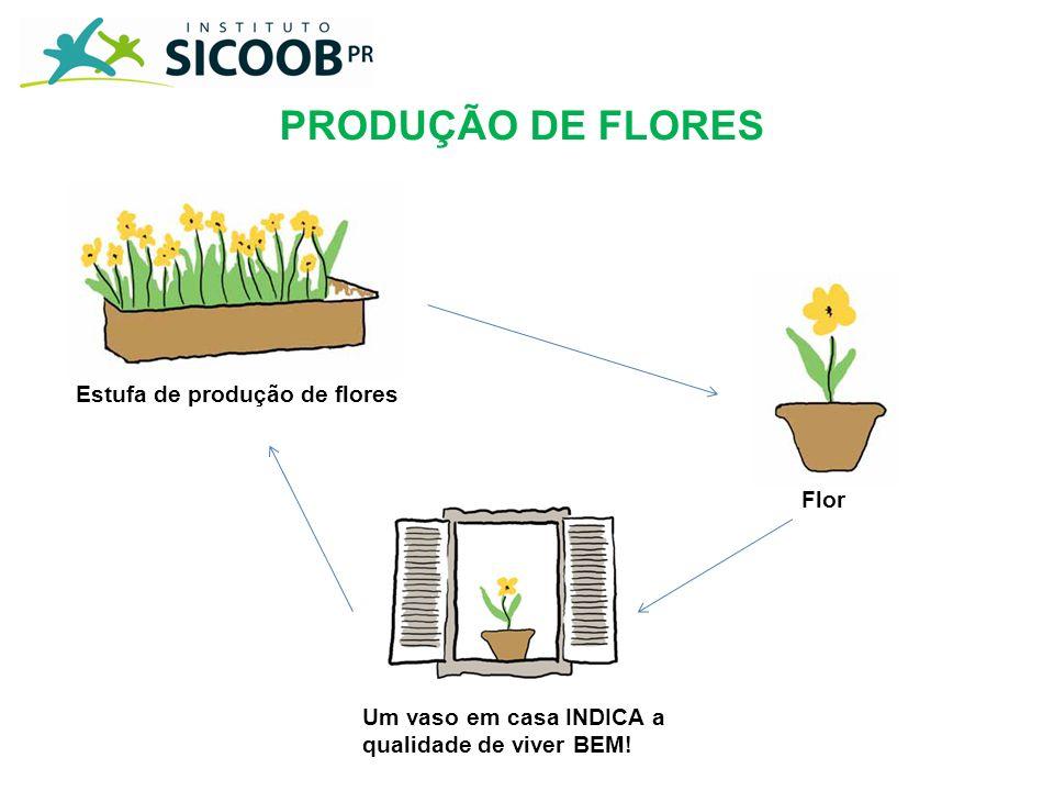 PRODUÇÃO DE FLORES Estufa de produção de flores Flor