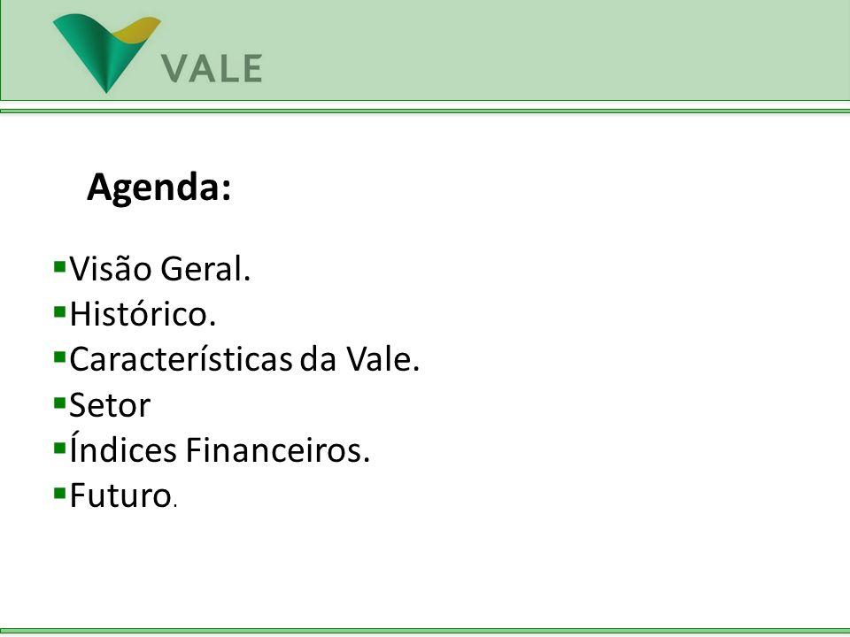 Agenda: Visão Geral. Histórico. Características da Vale. Setor